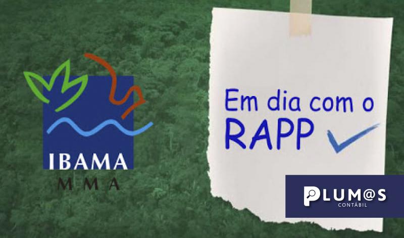 banner Ibama2020 - IMPORTANTE! Relatório de Atividades do Ibama 2020 ano base 2019