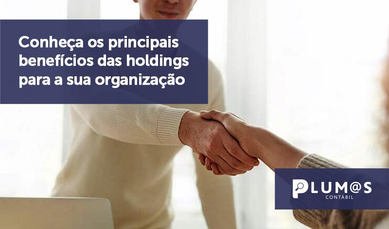 banner 09 holdings - Conheça os principais benefícios das holdings para a sua organização